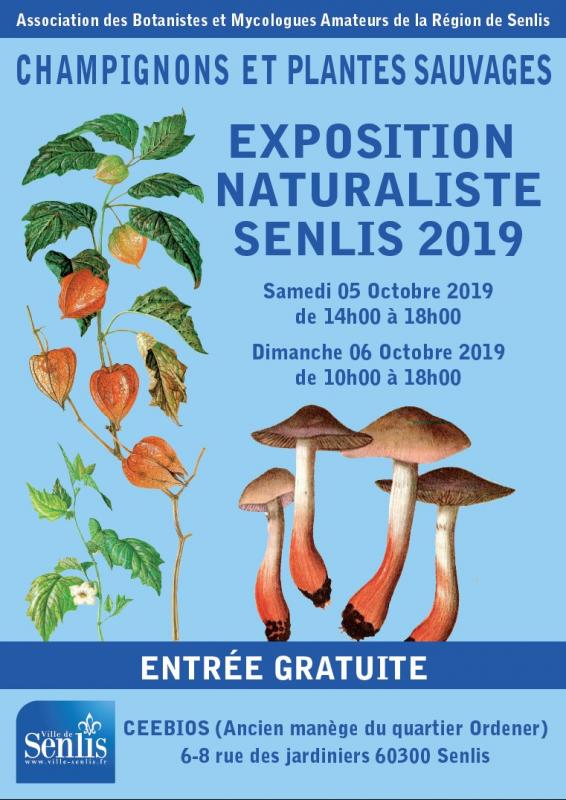 Affiche expo 2020